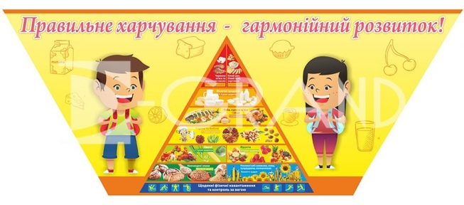 Стенд «Правильне харчування – гармонійний розвиток»
